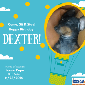 Happy Birthday, Dexter!