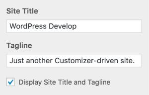 Site Title and Tagline Controls