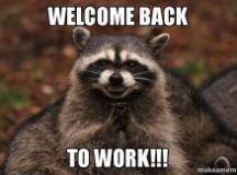 Welcome Back TO WORK!!! - Evil Plotting Raccoon   Make a Meme