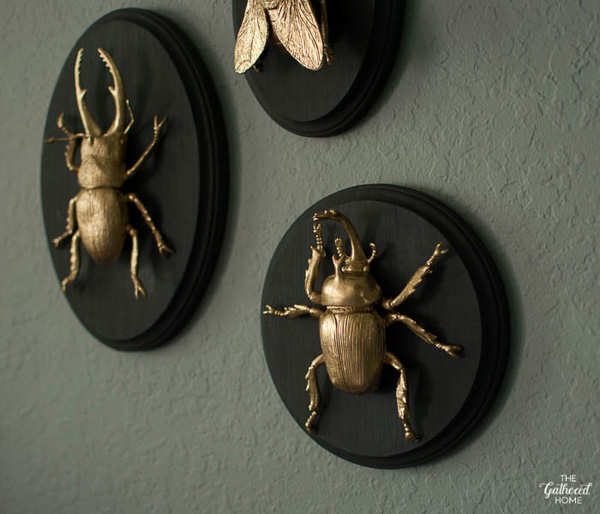 the-gathered-home-diy-gilded-insect-entomology-taxidermy-plaques-3