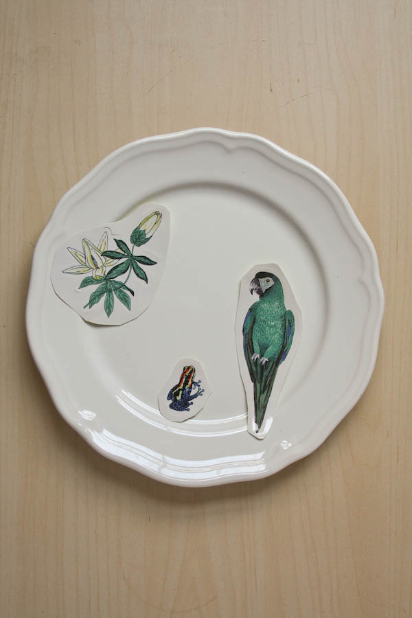 Decorative Plate DIY Tutorial by Make and Fable