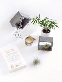 Faux stone air plant holders  Make and Tell