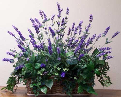 Wild Flowers and Herbs  Make BeLeaves