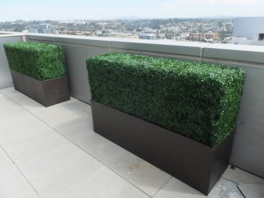makebeleaves-boxwood-hedges-the-mark