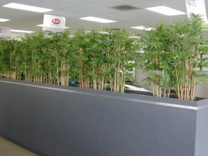 artificial bamboo planting