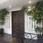 A set of 8 foot tall Birch trees frame an entrance.