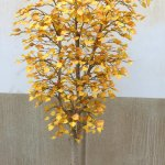 A yellow birch tree, designed to look 'young.'