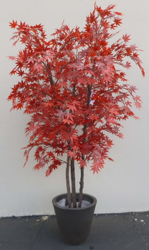 Make Be-Leaves custom-created several UV Red Maple trees for a Beverly Hills financial building.