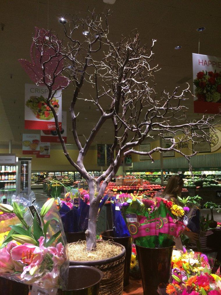 Make-Be-Leaves 6 foot natural manzanita trunks, o display at a supermarket