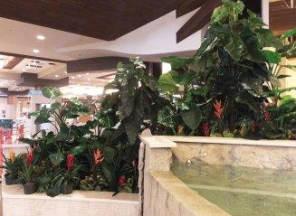 Hawaiian Gardens silk plants
