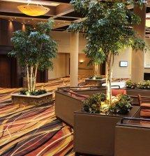 Holiday-Inn-Columbia