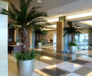 Palmdale-Regional-Hospital