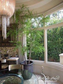 10ft Sophora Leaf artificial Tree