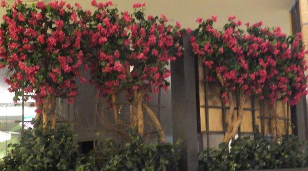 Tree Rental Weddings Events Artificial Plants Faux Trees