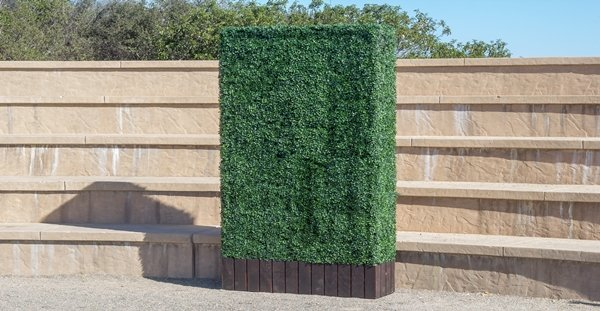 Make Be-Leaves UV Boxwood Hedges in a dark brown base planter 8ft tall by 4 ft wide