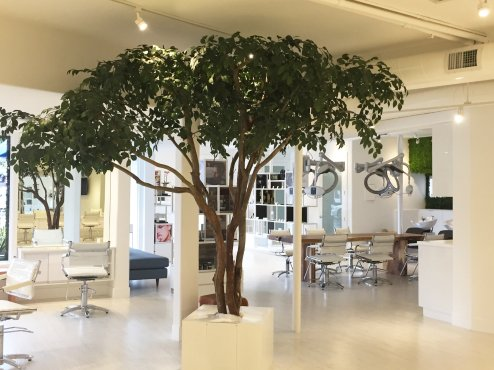 madison-salon-faux-tree