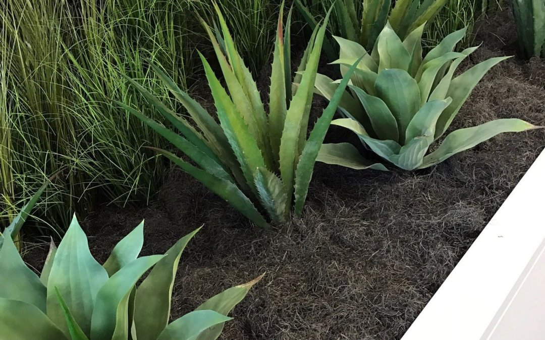 Contemporary Artificial Plantscape combining Faux Grasses and Agave
