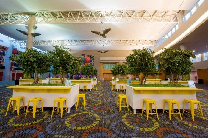 makebe-leaves-lemon-trees-DoTerra-expo
