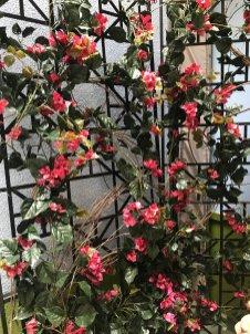 faux uv flowering trellis