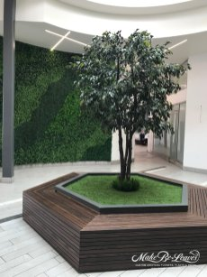 Artificial Green Wall & Faux Trees