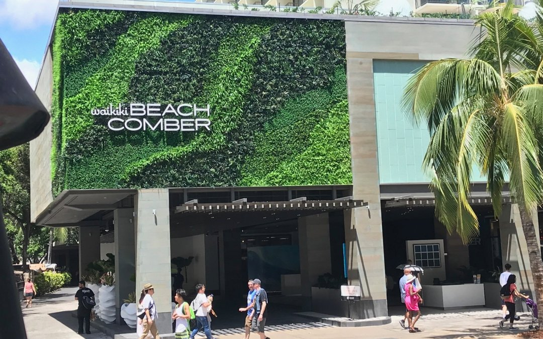 Outrigger UV green wall designer