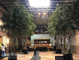 16ft-faux-mediterranean-olive-trees