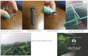 green wall fastening system