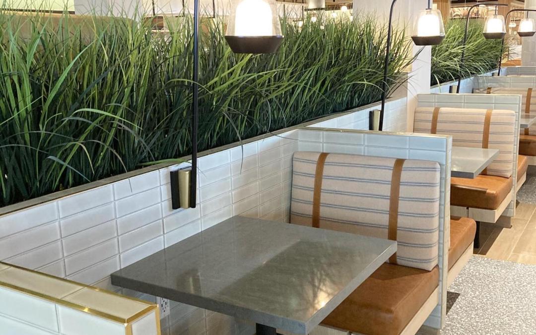 Interior Artificial Plants EDWARDS LIFESCIENCES