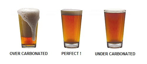 levels of carbonation of homebrew