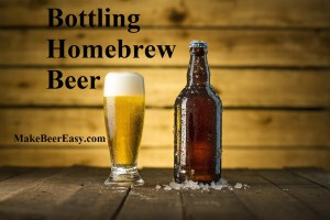 Homebrew beer in bottle and beer glass