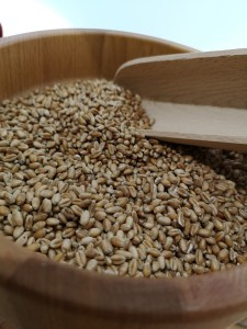 Grains for Homebrew beer in bag