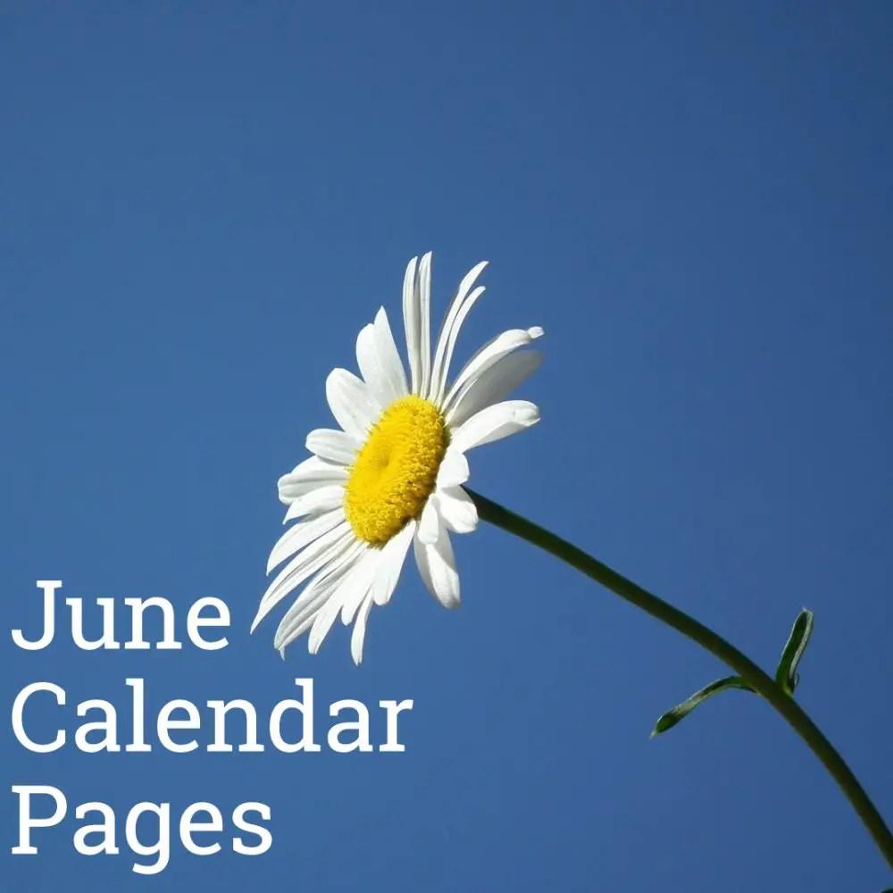 June 2019 Calendar Pages