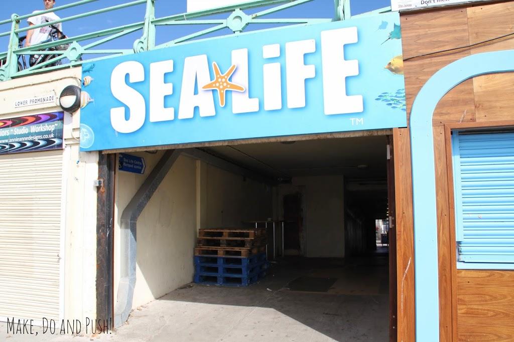 Sealife-Centre-1
