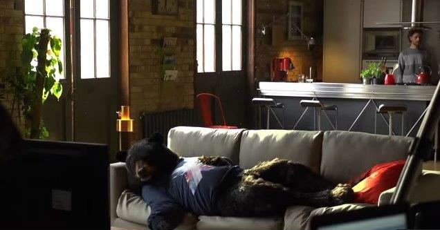 virgin media ed the sofa bear