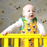 What H-Bear Wore // Maxomorra Dungarees