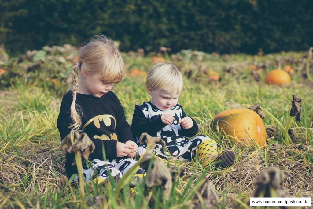 bear & babe childrenswear