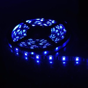 LED rope blue