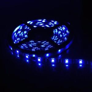 LED rope blue