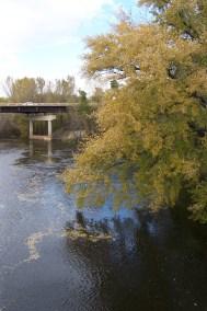 Rum River, Cambridge