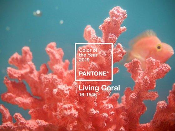 Couleur pantone 2019 Living Coral Corail - makeitnow.fr