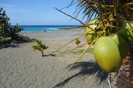 Coconut and Beach in Baracoa