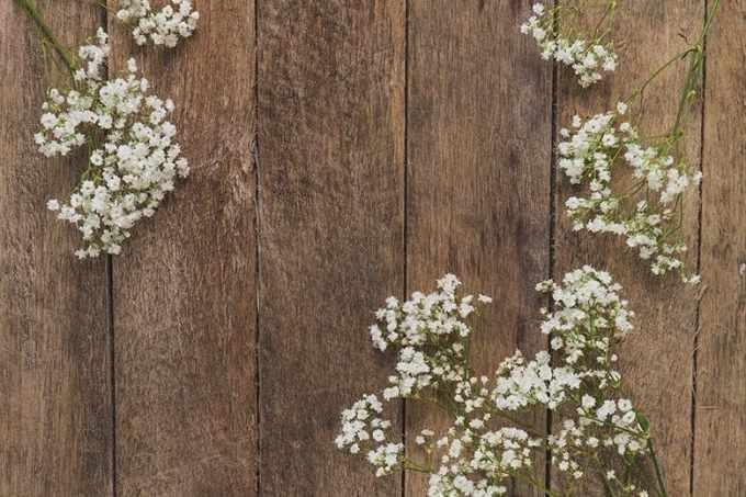 Ξύλινη επιφάνεια με Λουλούδια της Άνοιξης