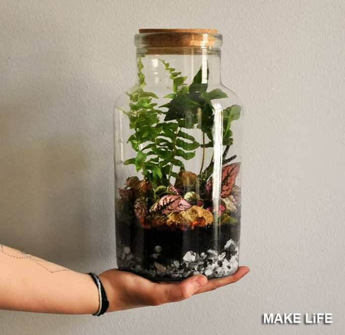 Χρησιμοποίησε ένα terrarium για να διακοσμήσεις το τραπεζάκι σαλονιού