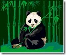 panda-update-google