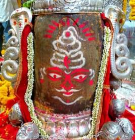 Lord Shiva Shankar (6)