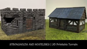 Strongholds and Hostelries 3D Terrain Bundle
