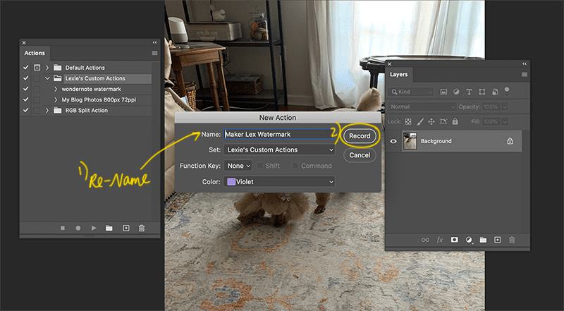 New Photoshop Action Settings Pop Up Box
