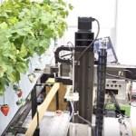 【智慧農業】採收機器人之視覺技術現況