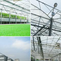 【科技輔助農業】台灣科技農夫務農有成!