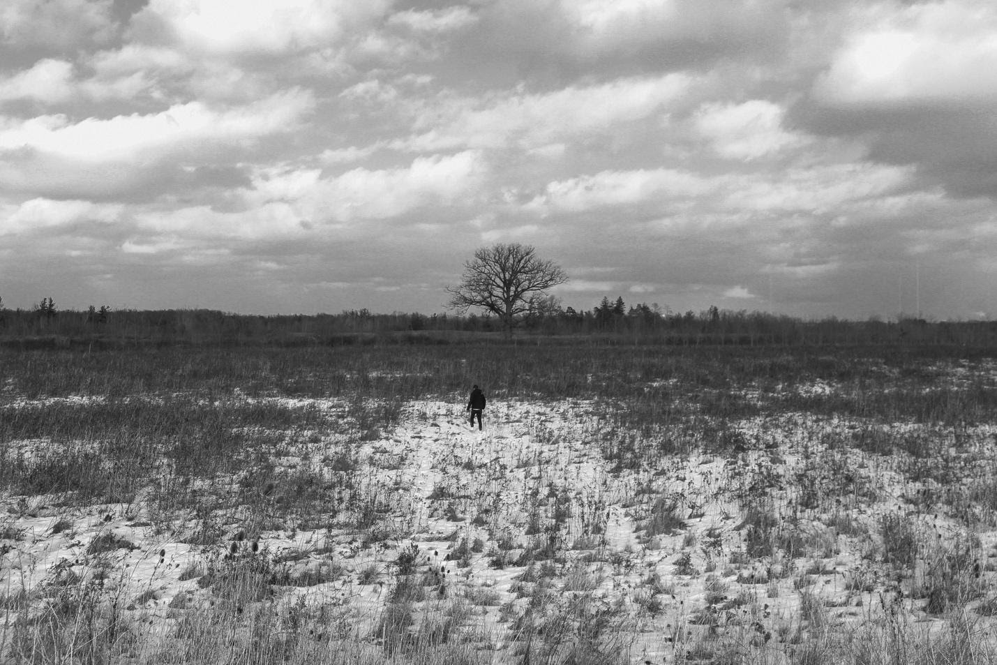 """""""High on Life"""" - 06: Man Walking in Open Field. Extreme Long Shot (Bordwell and Thompson, 189-190)"""